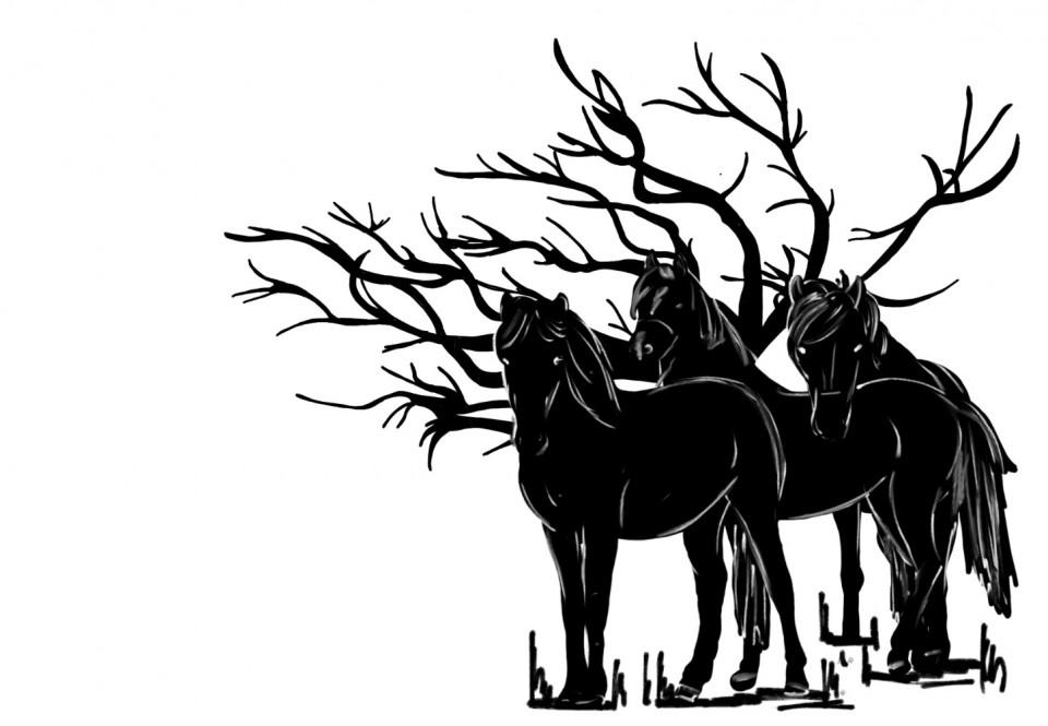 Entdeckung im Wald - Pferde