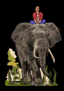 dbf_1603_elefanten-auf-der-flucht_02_1